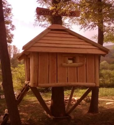 Case sull'albero 6